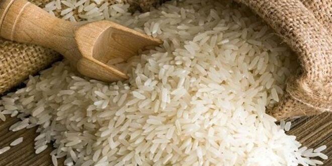 برنج بورسی گران از آب در آمد/ هر کیلو برنج سورت نشده 40 هزار و 500 تومان